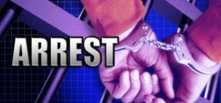 Homerton Fire Arms & Drug Seizure