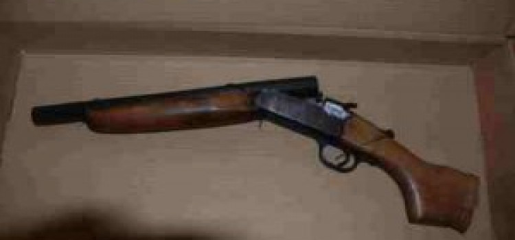 Clissold Park Firearm Seizure
