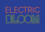 Hackney Electric Bloom Exhibition